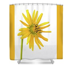 Prairie Dock Shower Curtain