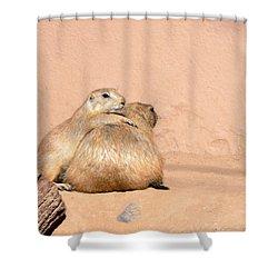 Prairie Dog Friends Shower Curtain by Laurel Powell