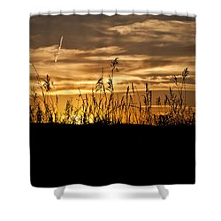 Prairie Glow Shower Curtain by Deborah Klubertanz