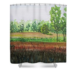 Prairie Grass Field Shower Curtain by Bethany Lee
