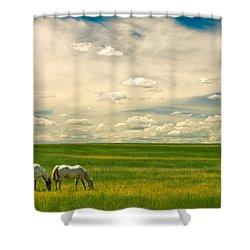 Prairie Horses Shower Curtain