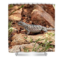 Prairie Lizard Shower Curtain