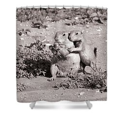 Prairie Love Shower Curtain