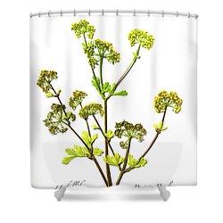 Prairie Parsley Shower Curtain