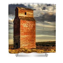 Prairie Sentinel Shower Curtain by Wayne Sherriff