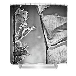 Prayer Flags High In The Himalayas Shower Curtain