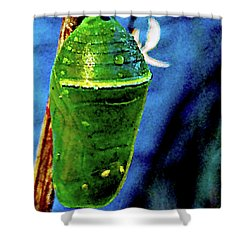 Pre-emergent Butterfly Spirit Shower Curtain by Gina O'Brien