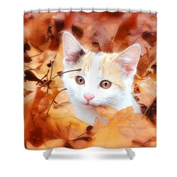 Shower Curtain featuring the photograph Precious Fall by Julie Clements