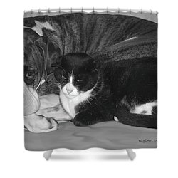 Precious Pals Shower Curtain by DigiArt Diaries by Vicky B Fuller