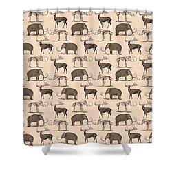 Prehistoric Animals Shower Curtain