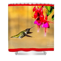 Pretty Anna Shower Curtain
