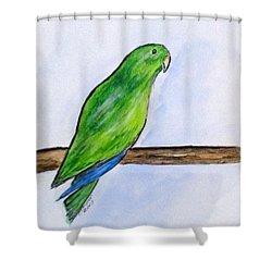 Pretty Boy Shower Curtain