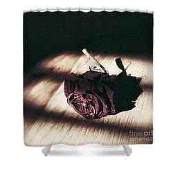 Pretty Dead Rose Resting In The Warm Sun Shower Curtain