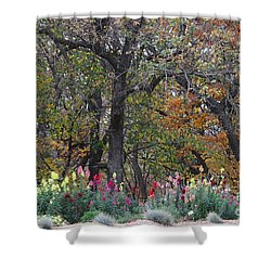 Pretty Display Shower Curtain