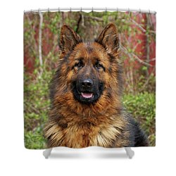 Shower Curtain featuring the photograph Pretty Girl Onja by Sandy Keeton