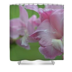 Pretty In Pink 2 Shower Curtain