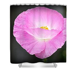 Shower Curtain featuring the photograph Pretty In Pink by AJ Schibig