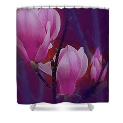 Shower Curtain featuring the photograph Pretty In Pink by Athala Carole Bruckner