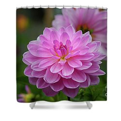 Pretty In Pink 1 Shower Curtain