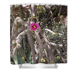 Flower Is Pretty In Pink Cactus Shower Curtain