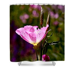 Pretty In Pink Shower Curtain by Rona Black