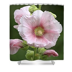 Pretty In Pink Shower Curtain by Teresa Zieba