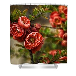 Shower Curtain featuring the photograph Pretty In Red by Cameron Wood