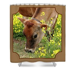 Pretty Jersey Cow Square Shower Curtain by Gill Billington