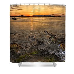 Pretty Klip Point Shower Curtain