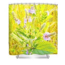 Pretty Lilac Shower Curtain