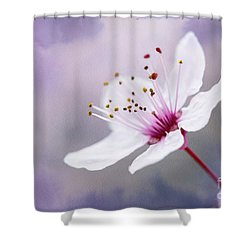 Shower Curtain featuring the photograph Pretty by Linda Lees