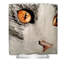 Pretty Little Brown Eyes Shower Curtain