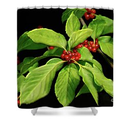 Shower Curtain featuring the photograph Pretty Little Red Berries by Lois Bryan