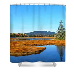 Pretty Marsh Shower Curtain