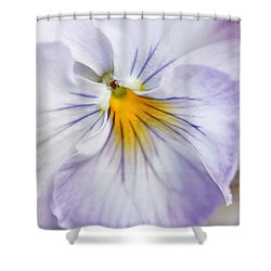 Pretty Pansy Flowers Shower Curtain by Jennie Marie Schell