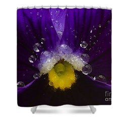 Pretty Pansy Shower Curtain