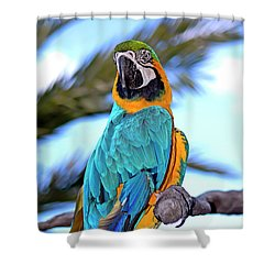 Pretty Parrot Shower Curtain