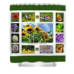 Shower Curtain featuring the photograph Pretty Petals Collection I by Diane E Berry