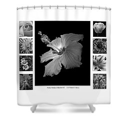 Shower Curtain featuring the photograph Pretty Petals Collection II by Diane E Berry