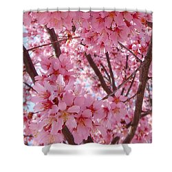 Pretty Pink Cherry Blossom Tree Shower Curtain
