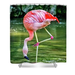 Pretty Pink Flamingo Shower Curtain