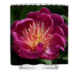 Pretty Pink Peony Flower Shower Curtain