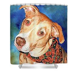 Pretty Please, Dog Portrait, Dog Painting, Dog Print, Dog Art Shower Curtain