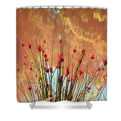 Pretty Pond Weeds Shower Curtain by Ellen O'Reilly