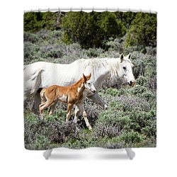 Pretty White Mustang Mare With Her New Foal - Sand  Wash Basin Shower Curtain