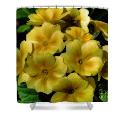 Pretty Yellow Primrose Shower Curtain by Smilin Eyes  Treasures
