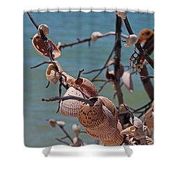 Shower Curtain featuring the photograph Previously Loved Treasures by Michiale Schneider