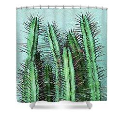 Prick Cactus Shower Curtain