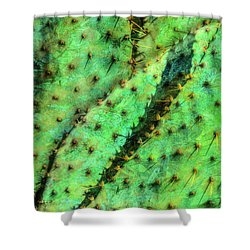 Shower Curtain featuring the photograph Prickly by Paul Wear