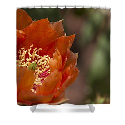 Prickly Pear Bloom Shower Curtain